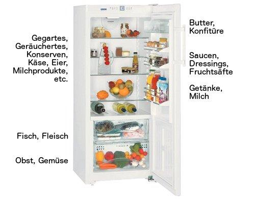Kühlschrank richtig einräumen mit dynamischer Kühlung und Kaltlagerfach