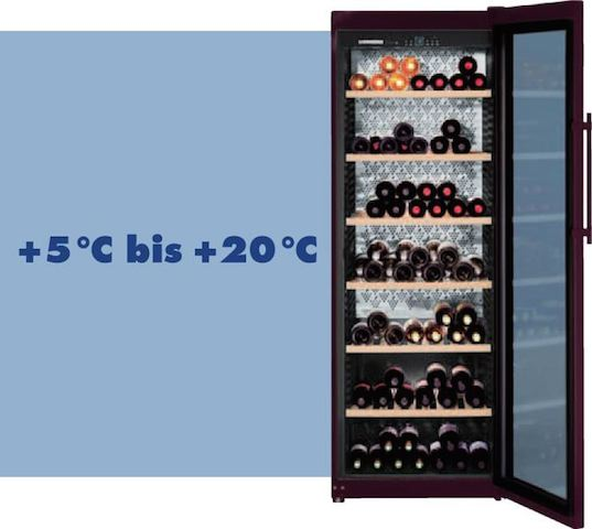 Konstante Temperatur im Weinklimaschrank